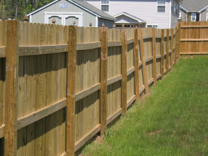 best-crap-fence