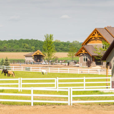Buckley Steel Horse Fence